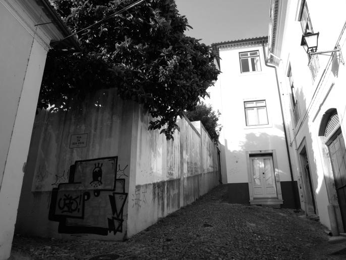 1_panoramica largo da rua do cabido_josecruzio