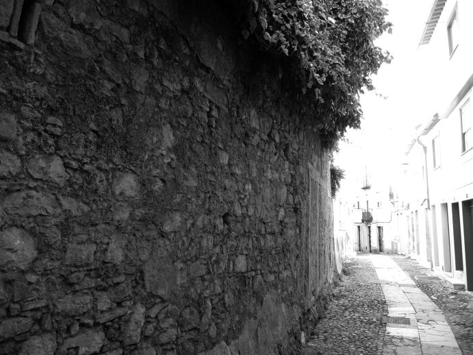 1_parededeprojecção_ruasubripas_josecruzio
