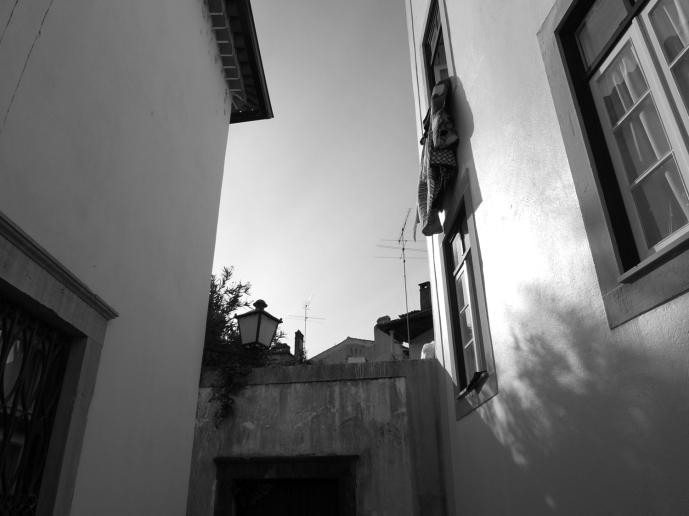 1_residendes e parededeprojecção_ rua do cabido_josecruzio